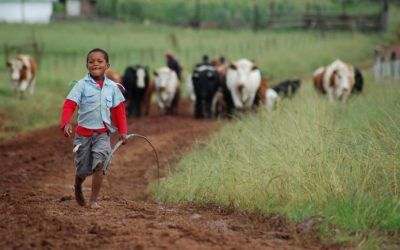 Covid-19: Invest in small-scale farmers now for rural resilience